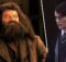 Fantastik Canavarlar 3 - Hagrid - Tom Riddle