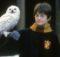 Harry Potter Felsefe Taşı Büyülü Taş