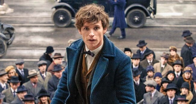 harry potter newt scamander