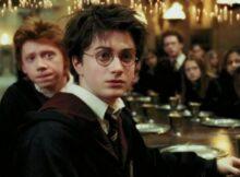 Harry Potter Dizisi Konu Teori