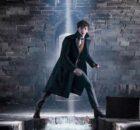 fantastik canavarlar 3 Fantastic Beasts: The Secrets of Dumbledore